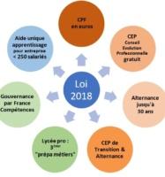 Loi Avenir Pro